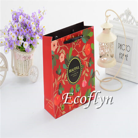 printed paper bags cheap low minimum-Ecoflyn